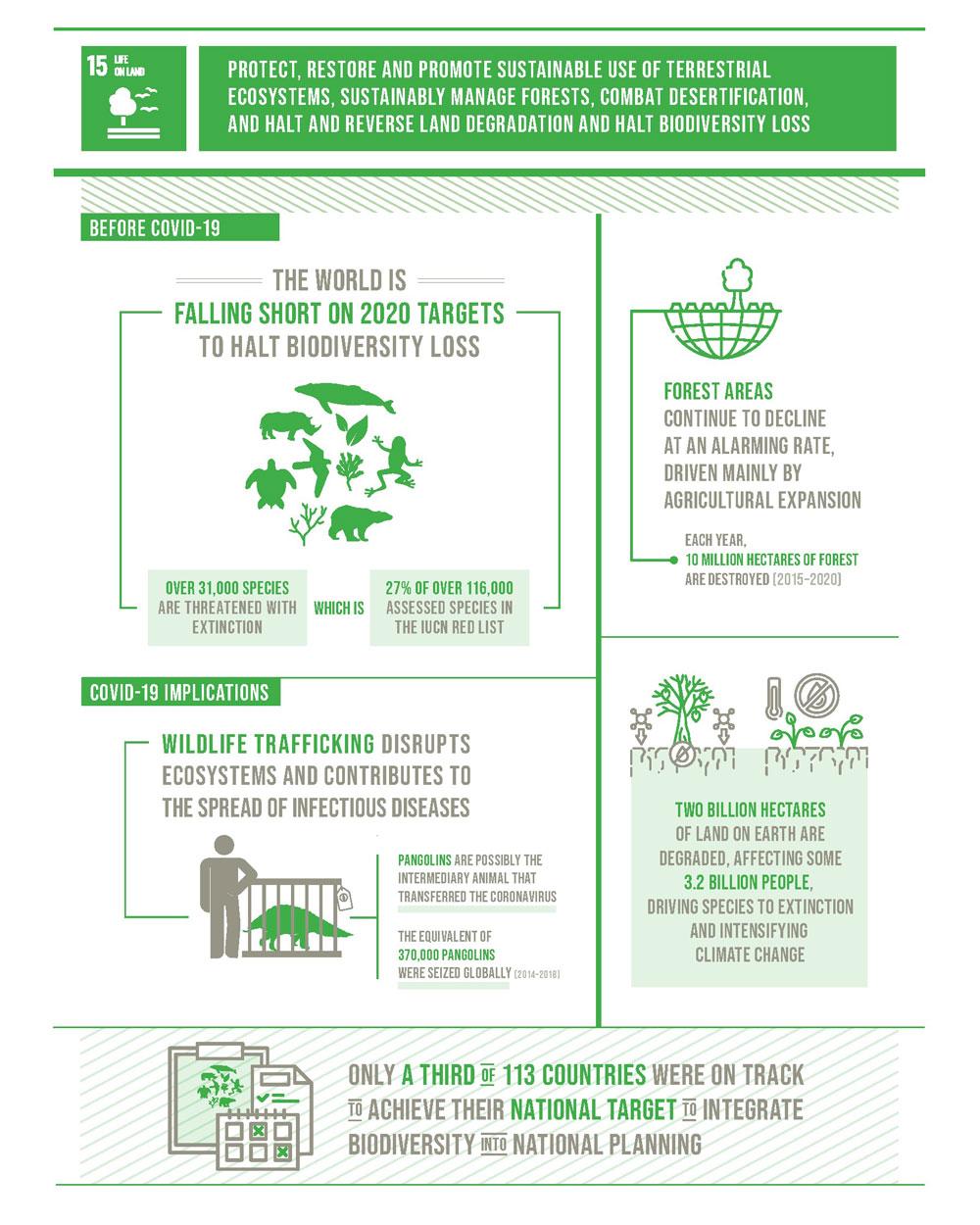 Ziel 15 der 17 Ziele für nachhaltige Entwicklung adressiert auch das Thema Biodiversität. Der SDG-Report 2020 zeigt: es ist noch viel zu tun!